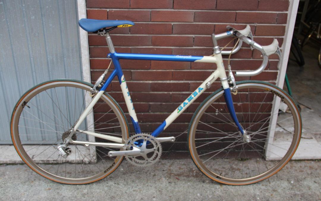 Bicicletta Alluminio Campagnolo CROCE D'AUNE